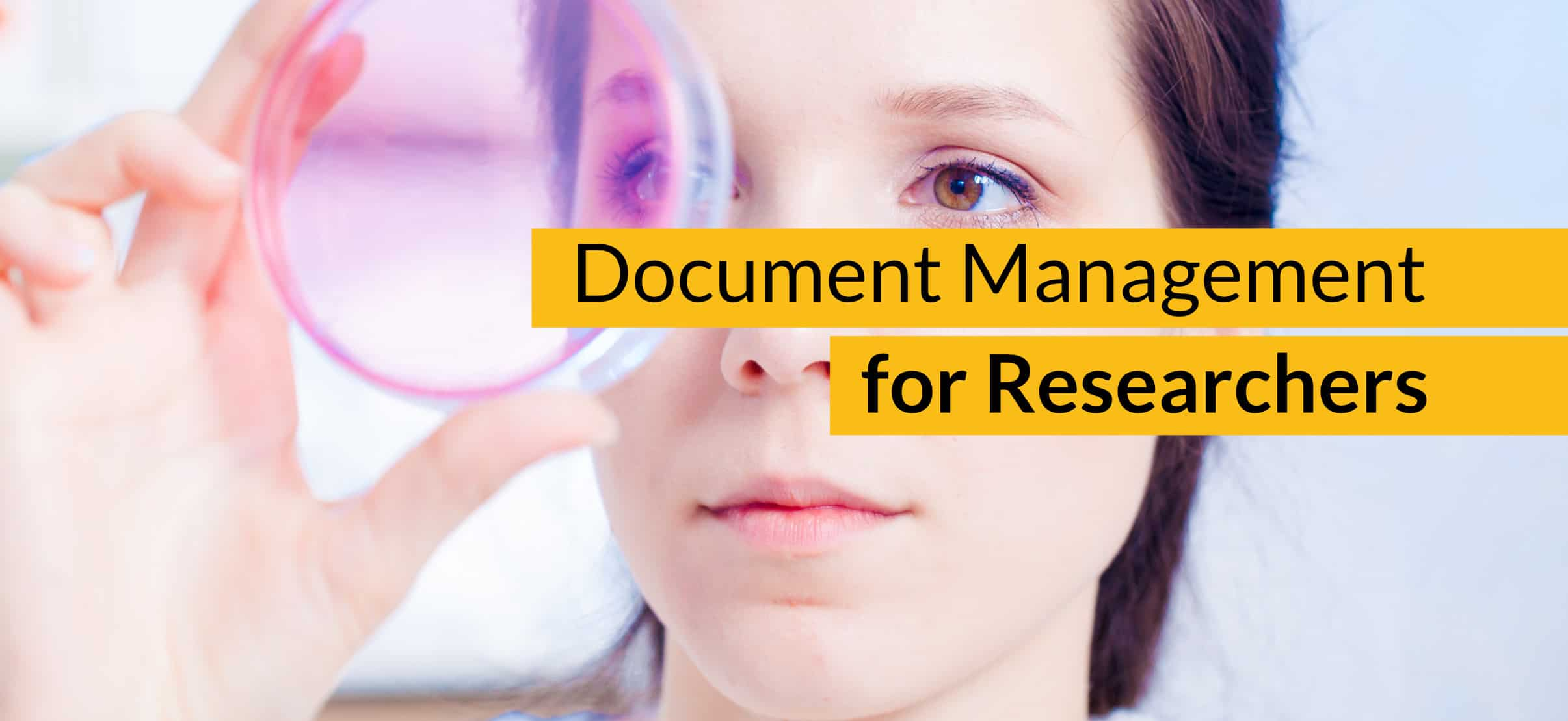 Document management researchers