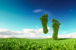 Reducing your carbon footprint with an electronic DMS